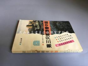 第三只眼睛看中国 (王山)