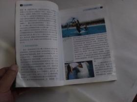 长江女神白鱀豚