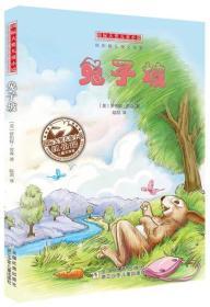 大奖儿童小说:兔子坡