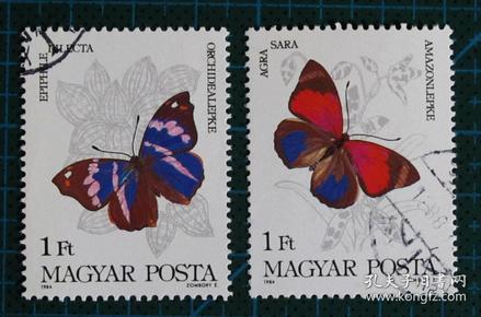 匈牙利邮票-----1984年蝴蝶(盖销票)