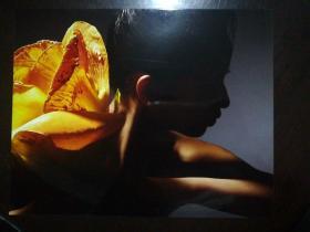 艺术照片:花影