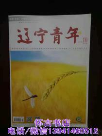 辽宁青年(2018年10期)