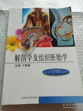 解剖学及组织胚胎学