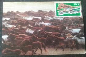 极限片《万马奔腾》盖内蒙古索伦马场97年5月1日戳