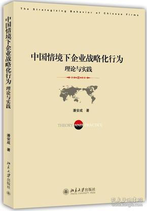 中国情境下企业战略化行为:理论与实践