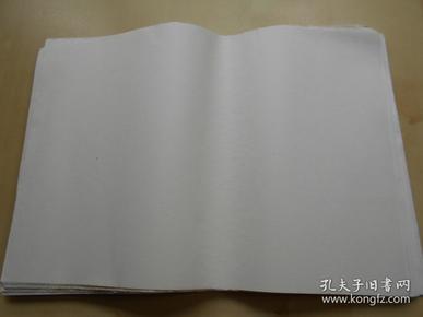 老纸头【90年代,大白纸120张】尺寸:38.8×26.9厘米