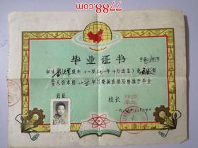 1983年华东地质勘探局269大队第一中学附属小学:毕业证书(有为人民服务)