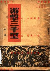 游击三千里-白芜著-民国地球出版社刊本(复印本)
