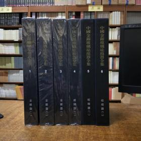 中国美术分类全集:中国金银玻璃珐琅器全集全六册(金银器三卷玻璃器一卷珐琅器两卷)第五第六卷为2002年8月一版一印1-4卷为2004年12月一版一印