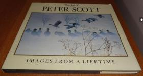 2手英文 The Art of Peter Scott 鸟类绘画为主