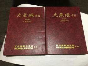大藏经索引 28.29 史传部(上)(下) 2本合让200元..