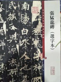 彩色放大本中国著名碑帖:张猛龙碑(选字本)