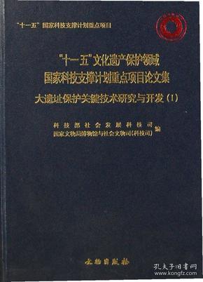 """""""十一五""""文化遗产保护领域国家科技支撑计划重点项目论文集:大遗址保护关键技术研究与开发(1)"""