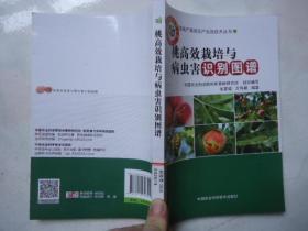 桃高效栽培与病虫害识别图谱