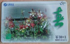 中国电信2002纪念卡春 30+1