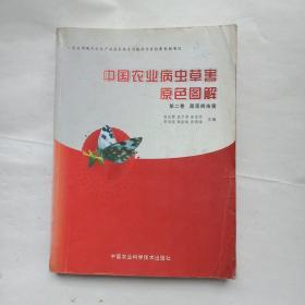 中国农业病虫草害原色图解(第二卷:蔬菜病虫害)