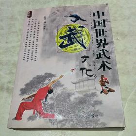 中国世界武术文化