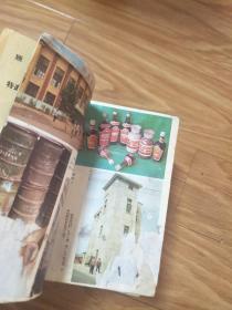 《古沈风貌》【早期介绍阜阳临泉县人物风俗的书,图片多幅!】