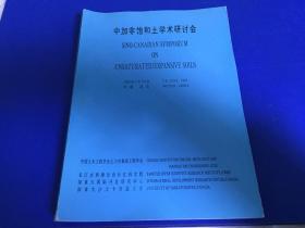 中加非饱和土学术研讨会(中英文版)