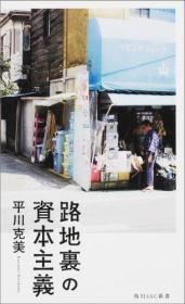 日文原版书 路地里の资本主义 (角川SSC新书) 平川克美