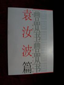 画品丛书:袁汝波篇