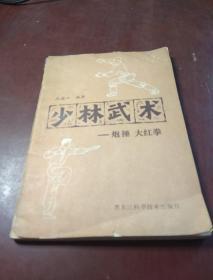 少林武术 炮捶 大红拳