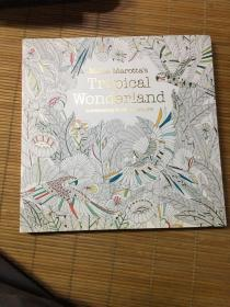 Millie Marotta's Tropical Wonderland 米莉·马洛塔的热带仙境a colouring book adventure 手绘涂色书