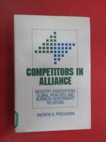 英文書 COMPETITORS IN ALLIANCE 精裝本共341頁