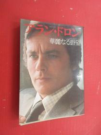 日文书  华丽  野望
