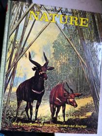 the illustrated library of nature VOL. 13