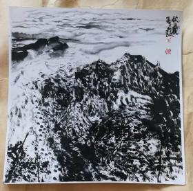画家张志民(秋山赋)画照片尺寸19.5公分×19.5公分