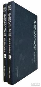 中国文化史迹(北中国考古图录 套装上下册)
