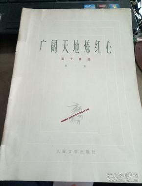 《广阔天地炼红心》笛子曲选(第一集)  人民文学出版社1973年一版一印  16开