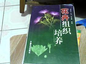 花卉组织培养