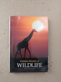 Hidden Worlds of WILDLIFE
