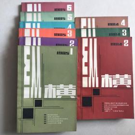 纵横杂志  1985.1-6  1984.2-4  共9本