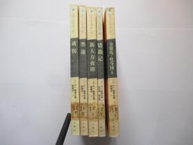 斯蒂文森惊险小说:黑箭、诱拐、新天方夜谭、金银岛·化身博士、错箱记
