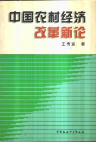 中国农村经济改革新论