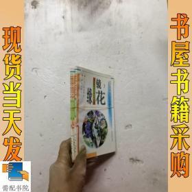 镜花缘-中国古典文学名著普及本   3 4 5   3本合售