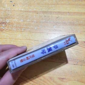 磁带 萝飘琴现代轻音乐