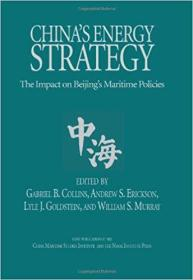 China's Energy Strategy 2012 精装,九五品