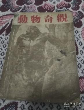 动物奇观(1952年)