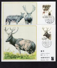 [BG-A2]中国集邮总公司极限明信片/许彦博设计MC7麋鹿2全2套/(2-1)盖北京76支邮戳、(2-2)盖江苏大丰麋鹿(代)邮戳,选购1套49元。