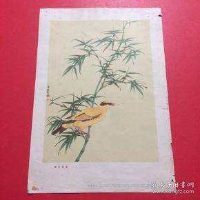 1957年,老画片,陈佩秋《翠竹黄莺》