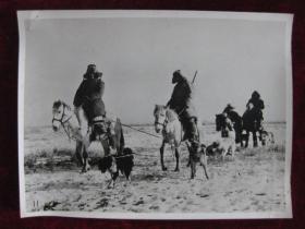 老照片   新疆维吾尔自治区乌苏县东风人民公社的哈萨克族打猎队  麻面厚纸      照片20厘米宽15厘米    B箱——19号袋