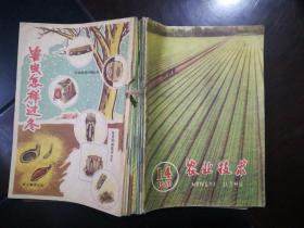 农业技术(1960年14.15 1961年3.4.6.7.8.10.11合订)