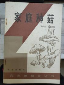 农家种植业丛书《家庭种菇》