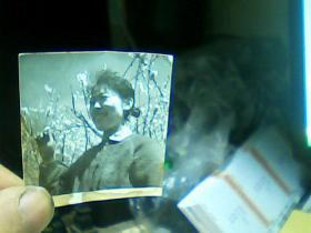 1寸半黑白照片 女青年在花丛