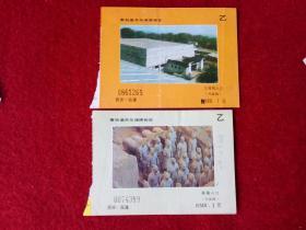 怀旧收藏 景点门票 八十年代 秦始皇兵马俑博物馆 20元一张
