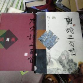 诗与画 唐诗三百首  词与画 唐宋词三百首【2册合售】